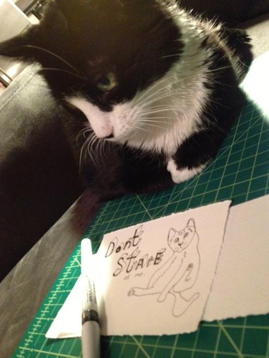 catdrawing